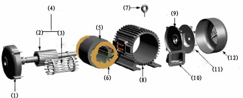 南洋防爆:防爆电机详细解剖图